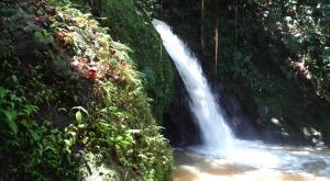 sensations-voyage-destination-guadeloupe-rando-basse-terre-cascade