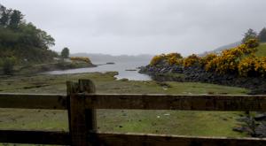 sensations-voyage-ecosse-ile-skye-island-flower-jenet-paysage