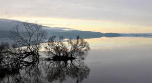 sensations-voyage-ecosse-loch-lomond-trossachs-sunrise-reflet-arbres