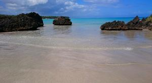 sensations-voyage-republique-dominicaine-samana-las-terrenas-2