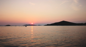 sensations-voyage-sensationsvoyage-croatia-dolphin-watch-pakostane-sunset-croatie-5
