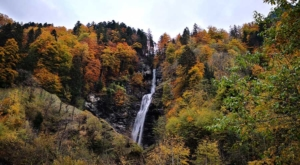 sensations-voyage-voyage-photos-suisse-lucerne-luzern-arbres-colors-forest-waterfalls-cascade