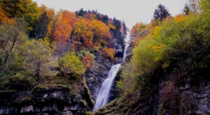 sensations-voyage-voyage-photos-suisse-lucerne-luzern-arbres-colors-forest-waterfalls