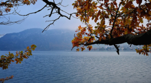 sensations-voyage-voyage-photos-suisse-lucerne-luzern-seehotel-kastanienbaum-lake-abre