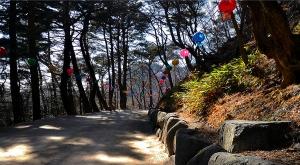 sensations-voyage-voyages-coree-du-sud-korea-gyeongju-seokguram-lanternes-parc-2