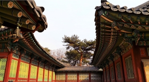 sensations-voyage-voyages-coree-du-sud-korea-gyeongju-temple-roof-ceiling