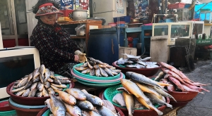 sensations-voyage-voyages-coree-du-sud-korea-seoul-food-jalagchi-market-poissons
