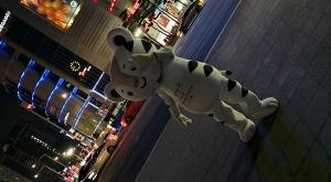 sensations-voyage-voyages-coree-du-sud-korea-seoul-night-mascottes-jo-jeux-olympiques-winter-games
