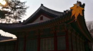 sensations-voyage-voyages-coree-du-sud-korea-seoul-plalais-temple-feuille