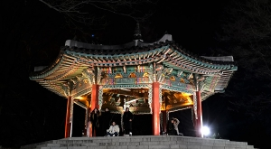sensations-voyage-voyages-coree-du-sud-korea-seoul-plalais-temple-nnight-busan-tower