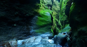 sensations-voyage-voyages-martinique-gorges-falaise-experience-canyoning-cascade