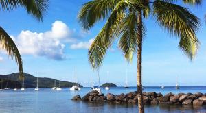 sensations-voyage-voyages-photos-martinique-bateaux-palmiers