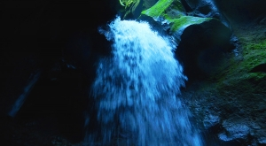 sensations-voyage-voyages-photos-martinique-experience-cascade-gorges-falaise-canyoning-descente-aventure-vert-evad-2