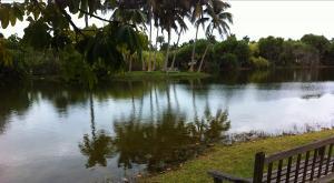 sensations-voyage-voyages-photos-miami-jardin-botanique-lac