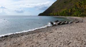 sensations-voyage-voyages-sainte-lucie-plage