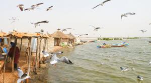 sensations-voyage-voyages-senegal-founidune-port