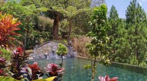 sensations voyage photos java mesa stila piscine