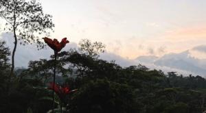 sensations voyage photos java mesa stila sunrise