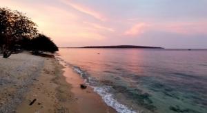 sensations voyage photos java sunset bali menjangan