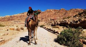 sensationsvoyage-sensations-voyage-jordanie-jordan-photos-petra-dromadaire-camel-4