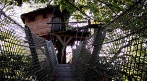 sensationsvoyage-sensations-voyage-morvan-bons-plans-cabane-arbres-domaine-chaligny-pont-de-singe-cozy-ecolodge-france