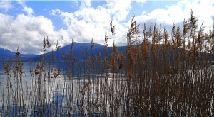 sensationsvoyage-sensations-voyage-photo-photos-france-annecy-lac-green-landscape-ble-2