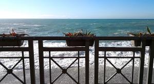 sensationsvoyage-sensations-voyage-photo-photos-italia-cinque-terre-cote-plantes