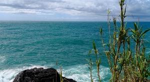sensationsvoyage-sensations-voyage-photo-photos-italia-cinque-terre-cote-randonnee-monterosso-mer
