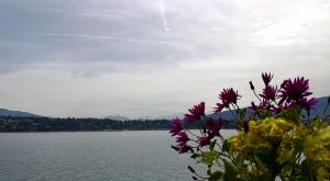 sensationsvoyage-sensations-voyage-photo-suisse-geneve-lac-leman-fleurs
