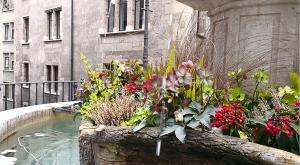 sensationsvoyage-sensations-voyage-photo-suisse-geneve-vieille-ville-ruelle-fleurie