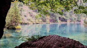 sensationsvoyage-sensations-voyage-suisse-oberland-berne-bernois-blausee-lake