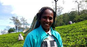 sensationsvoyage-voyage-sri-lanka-nuwara-eliya-tea-plantation-portrait