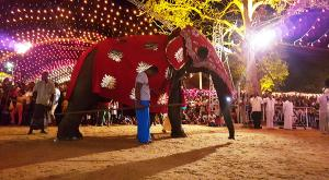 sensationsvoyage-voyage-sri-lanka-photo-elephants-katragama-perahera