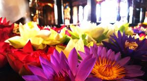 sensationsvoyage-voyage-sri-lanka-photo-kandy-temple-flowers