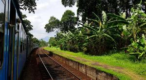sensationsvoyage-voyage-sri-lanka-photo-kandy-train-3