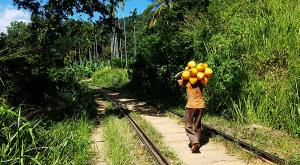 sensationsvoyage-voyage-sri-lanka-photo-kandy-train-railway