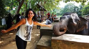 sensationsvoyage-voyage-sri-lanka-photo-millenium-elephant-dilawenna-5