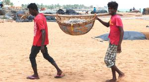 sensationsvoyage-voyage-sri-lanka-photos-negombo-fish-market-é