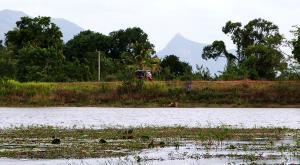 sensationsvoyage-voyage-sri-lanka-photos-tuktuk-sigiriya
