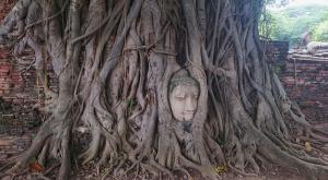 sensationsvoyage-voyage-thailande-ayutthaya-bouddha