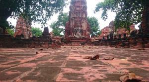 sensationsvoyage-voyage-thailande-ayutthaya
