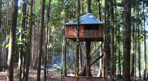 sensationsvoyage-voyages-destination-photos-guyane-treehouse