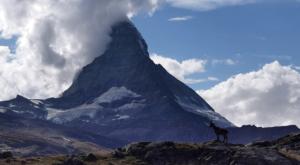 sensationsvoyage photos suisse riffelapls zermatt hike matterhirn mont cervin bouquetin